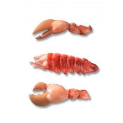 Blue Lobster - Raw
